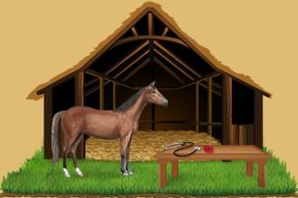 Hágase cargo de los caballos que pertenecen a los otros criadores en tu caballeriza y desarrolle tus capacidades al máximo.