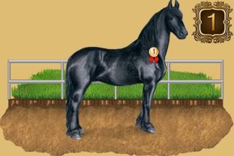 Clasificación de los criadores de caballos por días de presencia